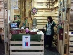 Expo Verde: Unidad de Rehabilitación y Comité de Gestión Ambiental del Psiquiátrico participan
