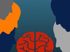 Psicosis de Transferencia, una revisión del concepto en el marco de pasantía clínica de analistas en formación por el InstitutoPsíquicatrico Dr. José Horwitz Barak